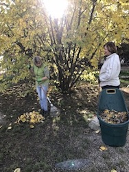 2018 November Herbstputz