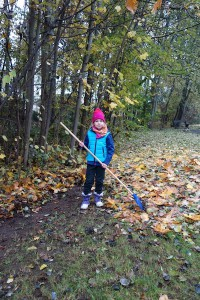2016 November Herbstputz